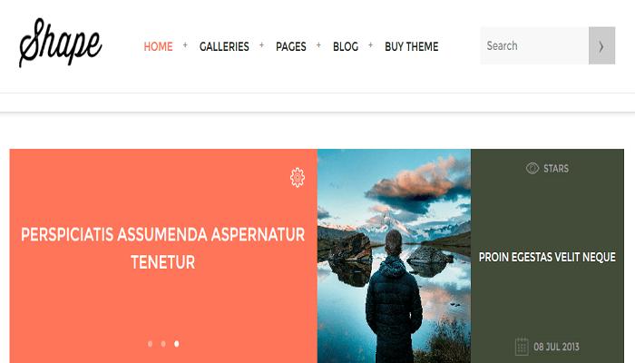 shape wordpress theme